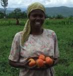 tomates camerounaises