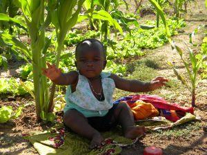 Les enfants sont particulièrement exposés à l'empoisonnement aux pesticides