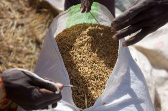 sac riz